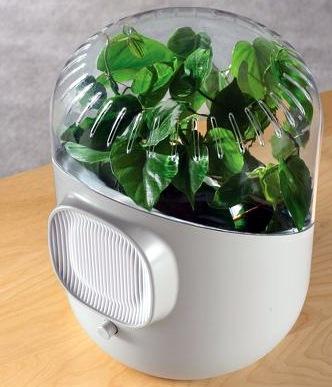 Botanical-Air-Purifier