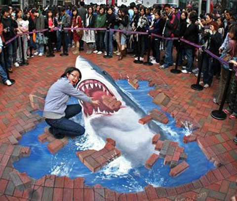 shark art