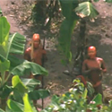 Post Thumbnail of Uncontacted Tribes
