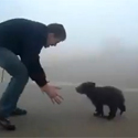 Post thumbnail of Cutest Bear Attack