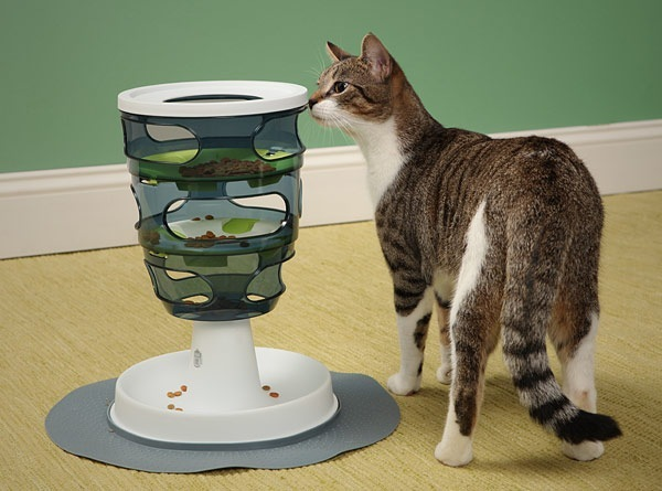 Designer Cat Toy