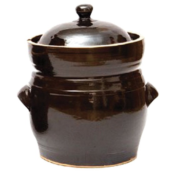 Fermantaition Pot