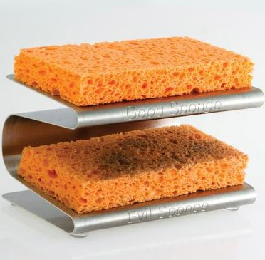 Good-Bad-Sponge