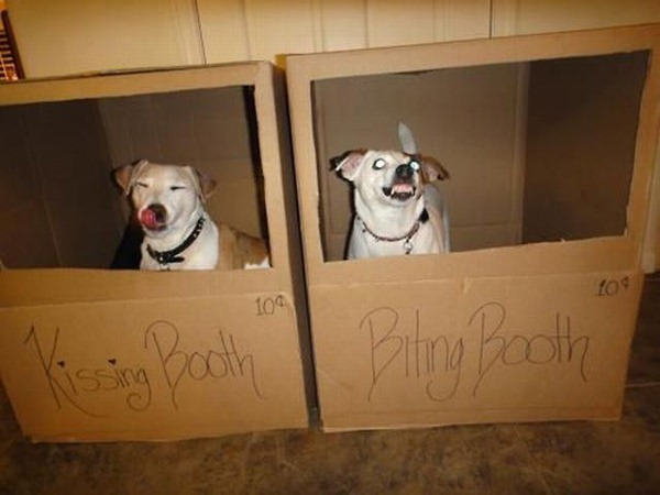 Biting Booth
