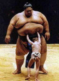 Huge Sumo