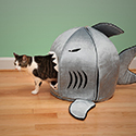 Post Thumbnail of Shark Pet Bed
