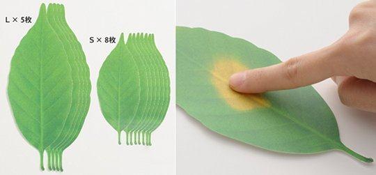 Temperature Paper
