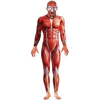 Anotomy Costume Man