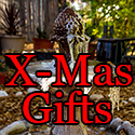 Post thumbnail of The Ultimate Christmas Gift Guide 2012