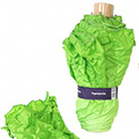 Post thumbnail of A Lettuce Umbrella