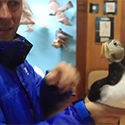 Post Thumbnail of Holding A Puffin