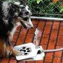 Post thumbnail of Dog Self Serve Water Fountain